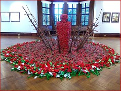 Poppy Display at Beverley .. photo by ** Janets Photos **