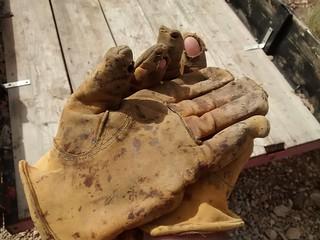 Time for new gloves