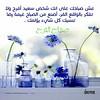 22663616938_ffeb9b9ac8_t