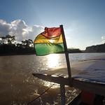 Survivor en jungle amazonienne Parc National Madidi (Bolivie)