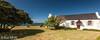 271 - Afrique du Sud - Octobre 2016 - Hermanus - IMG_3034
