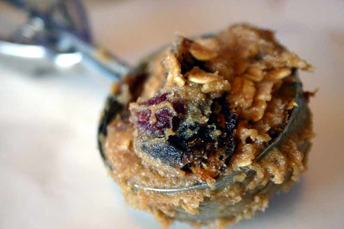 Honey Date and Cranberry Oatmeal Cookie Dough