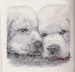 Vervaco - Puppies - reves