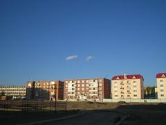 Mongolian summer
