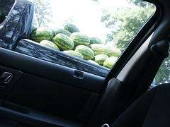 Watermelons at First Rest Stop