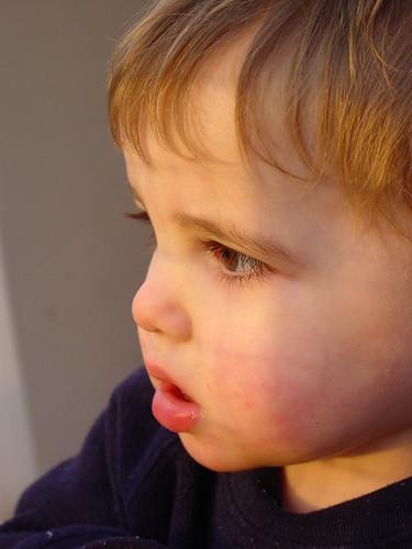 Xander Feb 2006