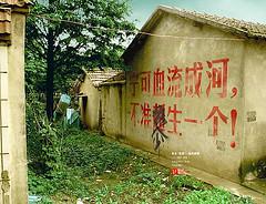 中国最NB的特色标语广告大全 - yueming - 我的地盘我做主