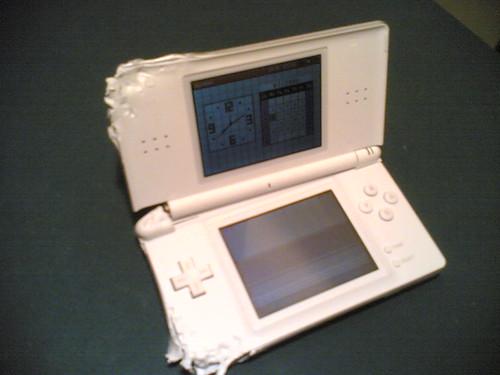 Nintendo DS Lite mordida por un perro