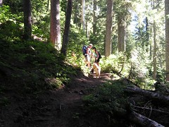 Heading up the trail to Yellow Aster Butte