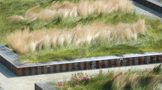 paul kephart, living architecture, green roof, habitat restoration, rana creek