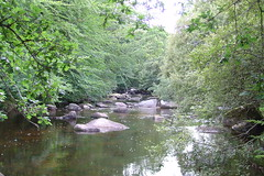 Dartmeet #6