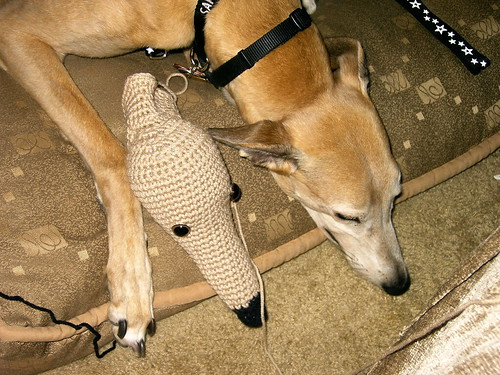 Crocheted Greyhound in Progress