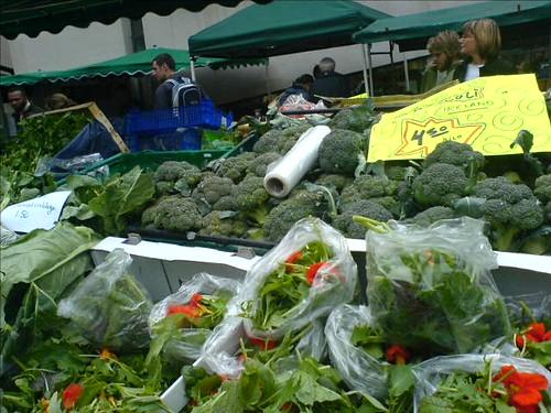 Organic Dublin Broccoli