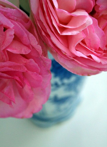 pink roses in the $1 blue vase