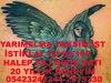 22774763109_e249d13772_t