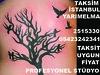 22846814710_3b383aca04_t