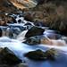 Chew Brook Cascades