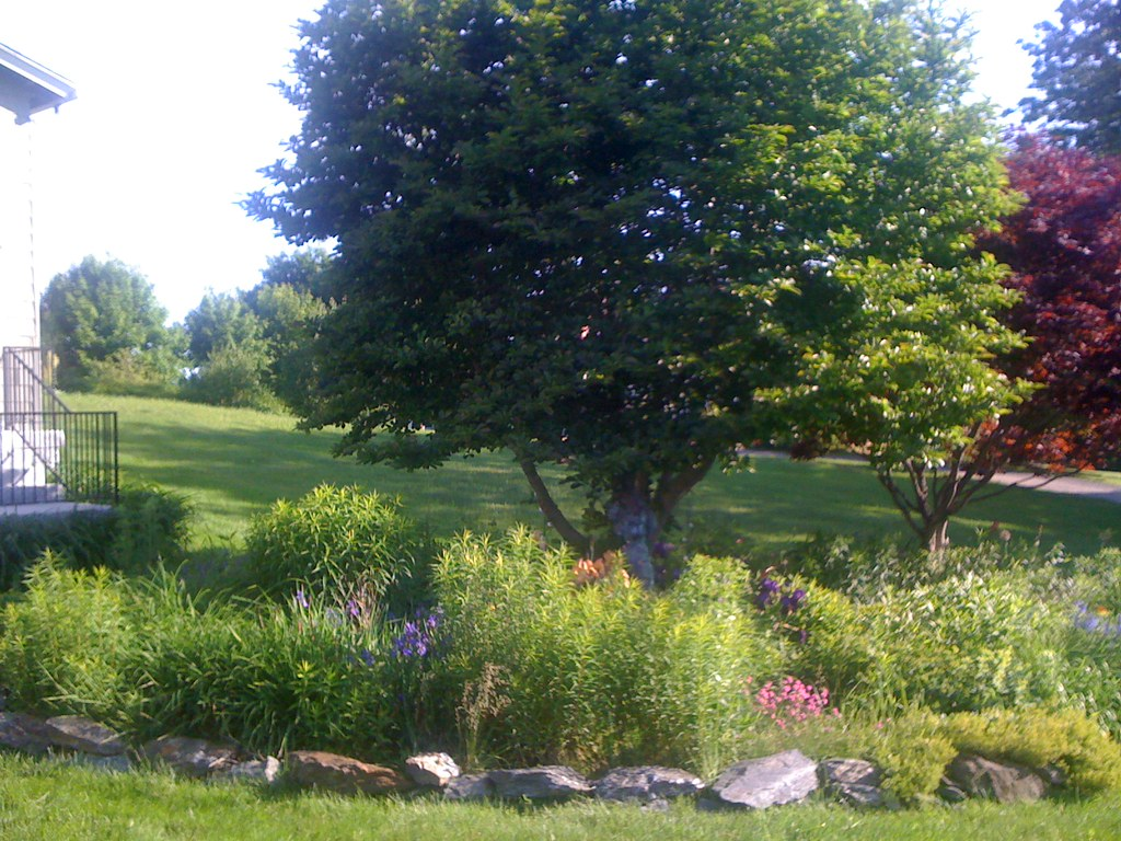 PHOTO GALLERY - Edging, Weeding & Mulching - Atlantic Lawn Care - Portland, Maine