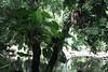 Maison de la forêt