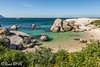 290 - Afrique du Sud - Octobre 2016 - Betty's Bay - Boulders Beach - IMG_3083