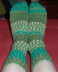 chameleon socks finished