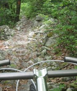 Signal Knob trail