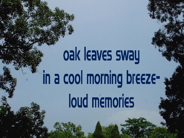 oakleavessway