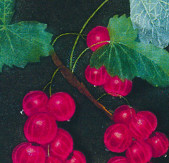 currants (detail)