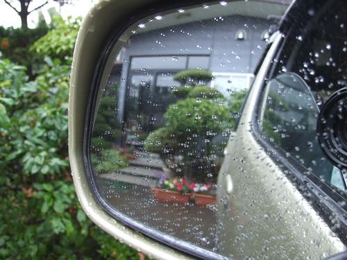 rainy days.............