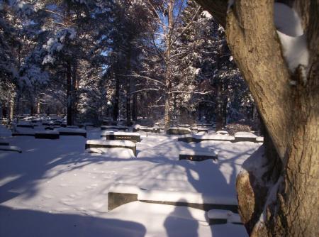 CementerioJ