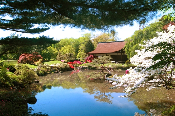 Moment Ordinaire Japanese Garden