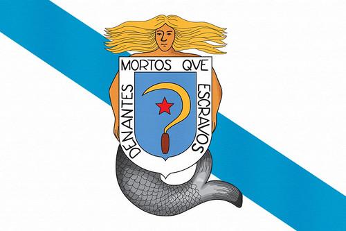 BandeiraCastelaoTex