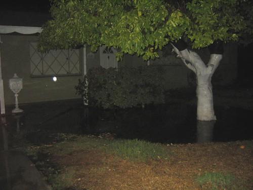 front yard flood