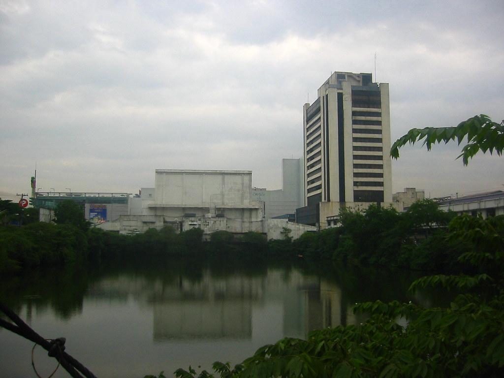 Cubao Pond1