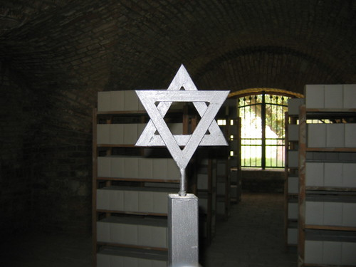 Theresienstadt Star of David