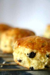 Orange and Currant Scones