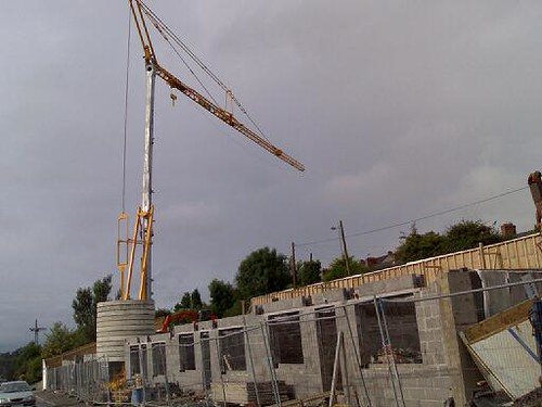 Crane in Cavan