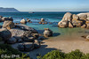 300 - Afrique du Sud - Octobre 2016 - Betty's Bay - Boulders Beach - IMG_3109