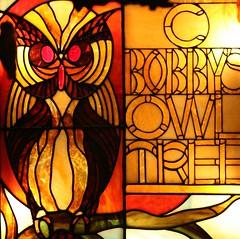 Bobby's Owl Tree