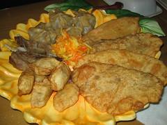 Mongolian plate