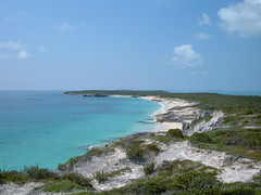 50' up, south, Hoffman's Cay