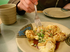 dumplings at Wonton Garden