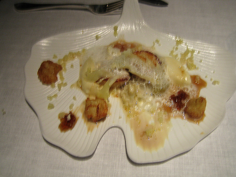 Tom Aikens - Roasted Scallops + Sherry Gelee + Cauliflower Puree