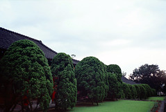 Tamkang University