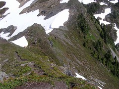 Yellow Aster Butte 049