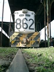 CIMG9497.JPG