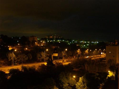 Palma de noche