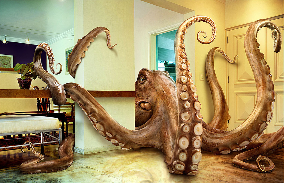 octopus attacks!