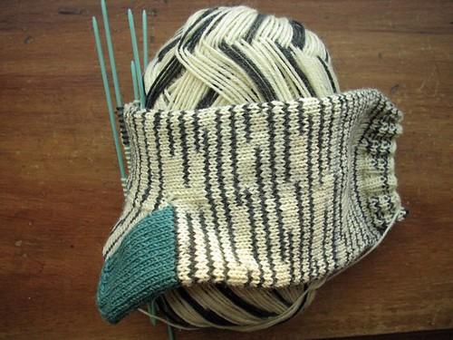 zebra sock wip