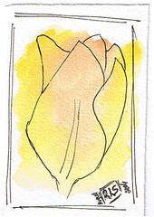 Floral ATC 3